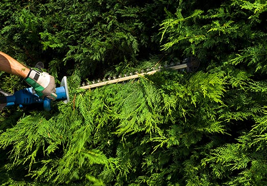comparateur de prix création de jardin dans les Yvelines